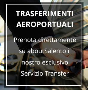 trasferimenti aeroportuali